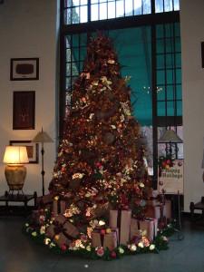 Ahwahnee Hotel Solarium Tree